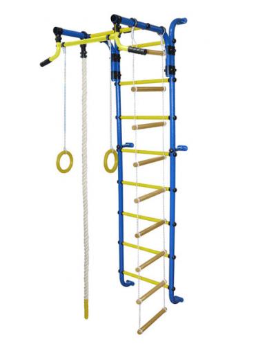 ДСК Сигма-2А Плюс + подарок скидка на мат гимнастический