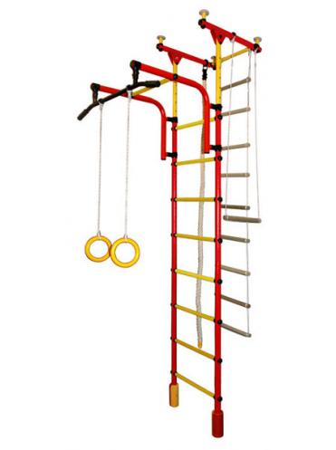 ДСК Фаворит-1С Плюс + подарок мат гимнастический