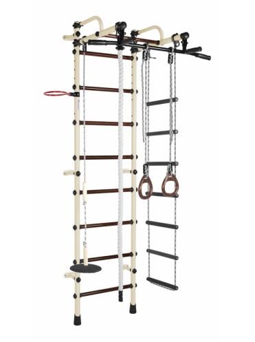 ДСК Лира-3К Плюс + подарок мат гимнастический